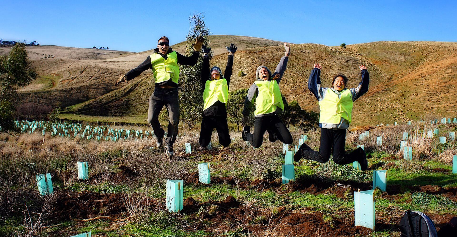 Conservación del Medio Ambiente Voluntariado en el Extranjero