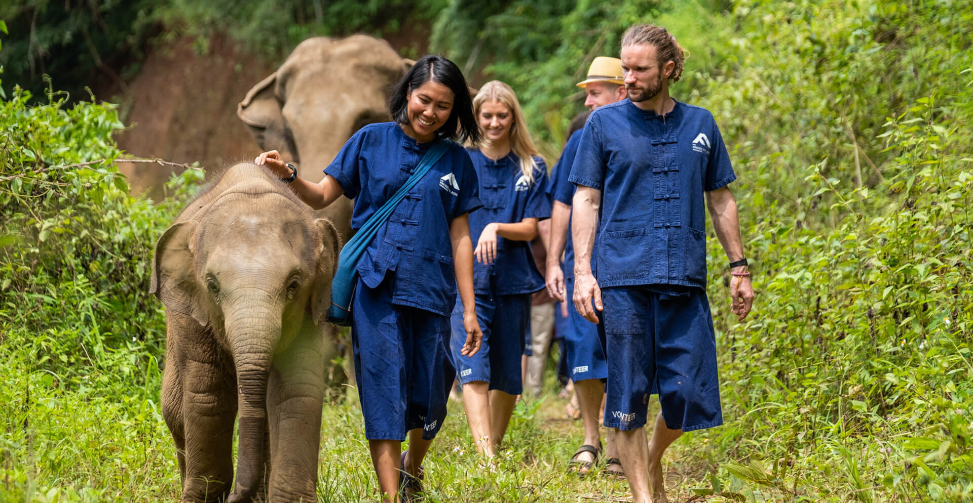 Wildlife Conservation Volunteer Abroad Projects