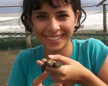 Voluntário na Costa Rica com Tartarugas