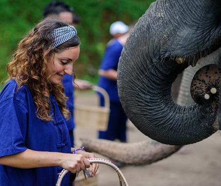 Elephants 2 Beaches Volunteer & Travel Thailand