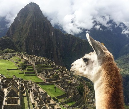2 Days 1 Night Sacred Valley - Machu Picchu