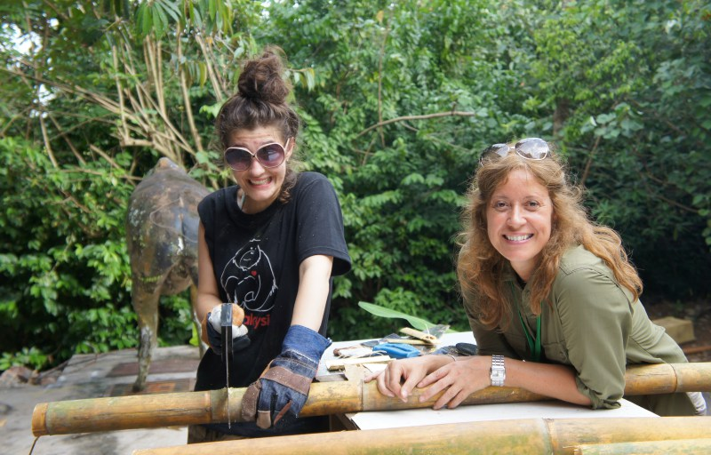 Voluntariado en el zoológico de Malacca en Malasia