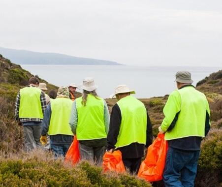 Experiencia de conservación de la costa oeste de Nueva Zelanda