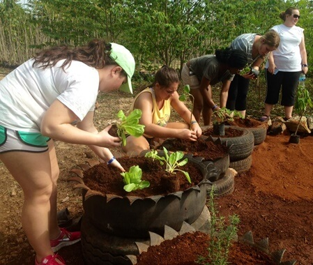 Urban Reforestation Volunteer Program