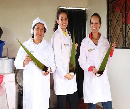 Proyecto de empoderamiento de la mujer y comunidad ecológica local