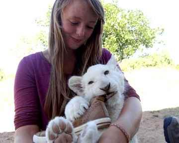 Proyectos de Voluntariado de vida silvestre en África del Sur