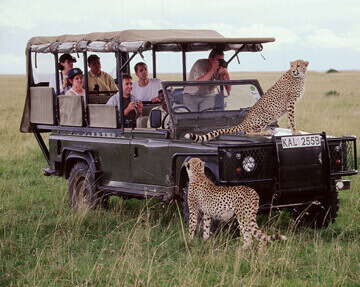 2 Days Masai Mara Joining Safari