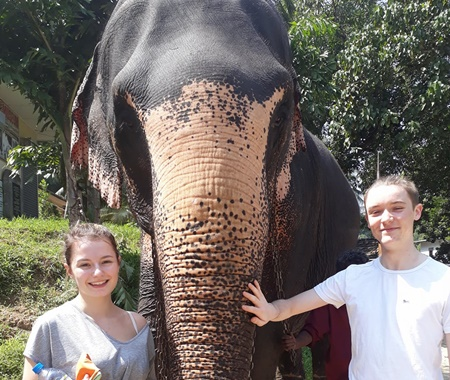 Proyecto de voluntariado comunitario y de elefantes.