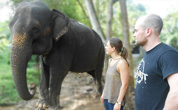 Elephant and Community Volunteer Project