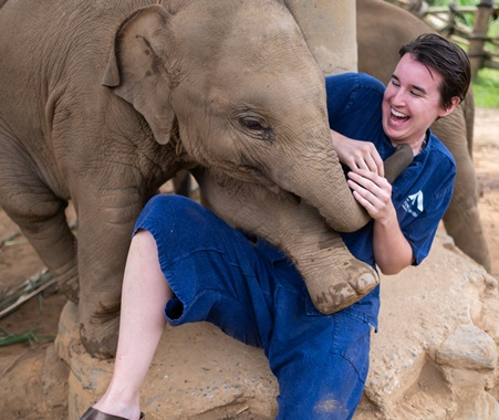 Volunteer with Elephants in Chiang Mai Thailand