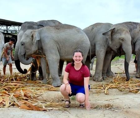 Voluntário com elefantes no Surin Tailândia