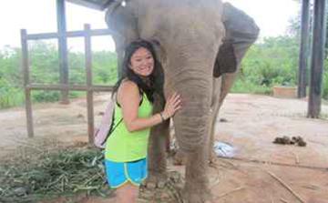 Voluntário com elefantes em Surin Tailândia