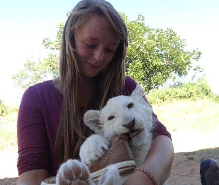 Wildlife Volunteer Projects in South Africa