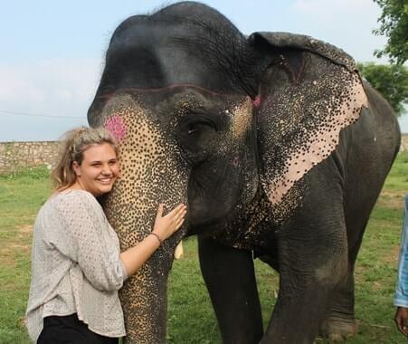 Cuidado de niños y experiencia de voluntariado con elefantes
