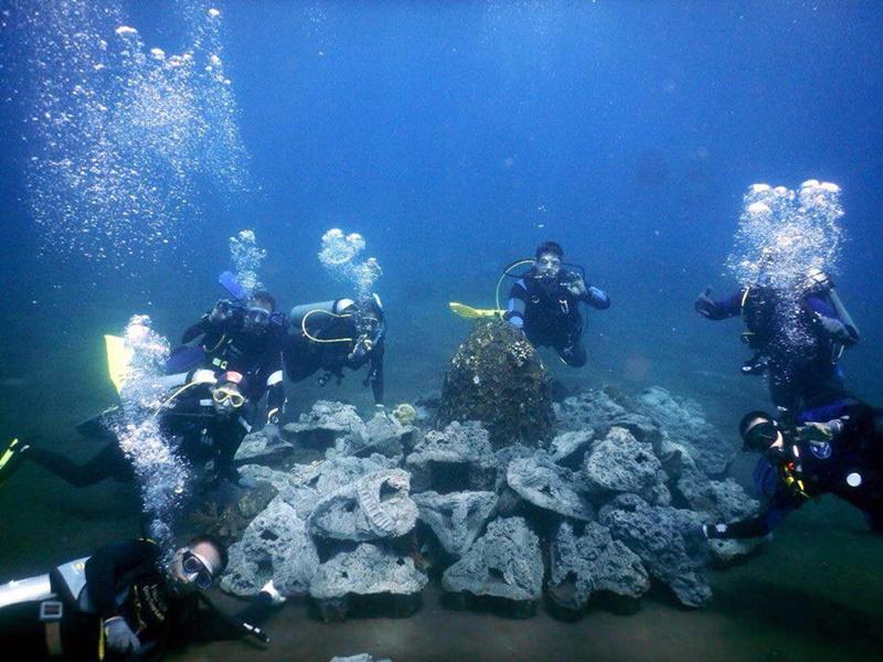Volunteer Marine Conservation Program in Bali   Volunteering Solutions