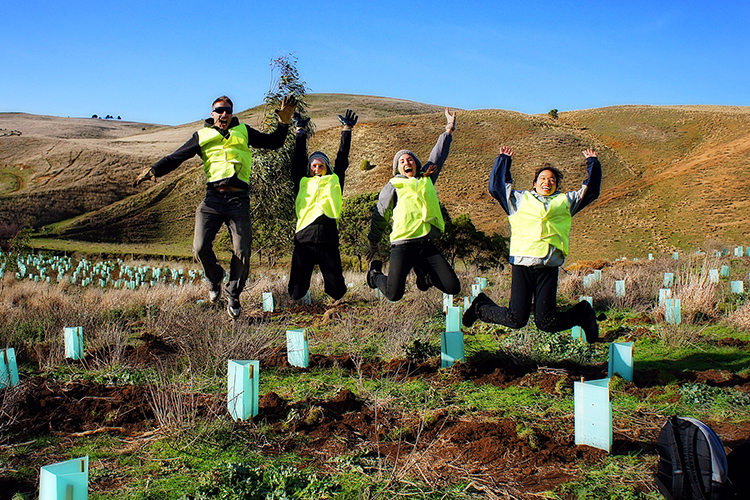 Group Conservation volunteering experience in Australia>