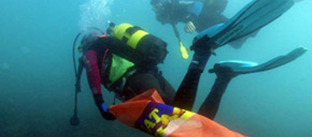 marine-conservation
