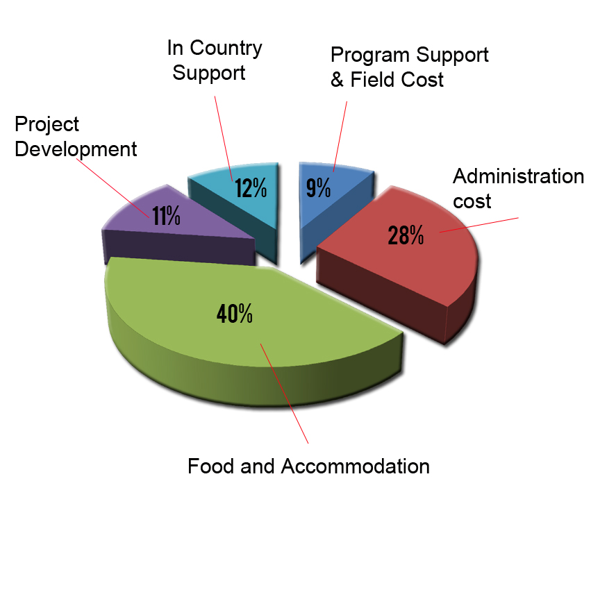 volunteering cost