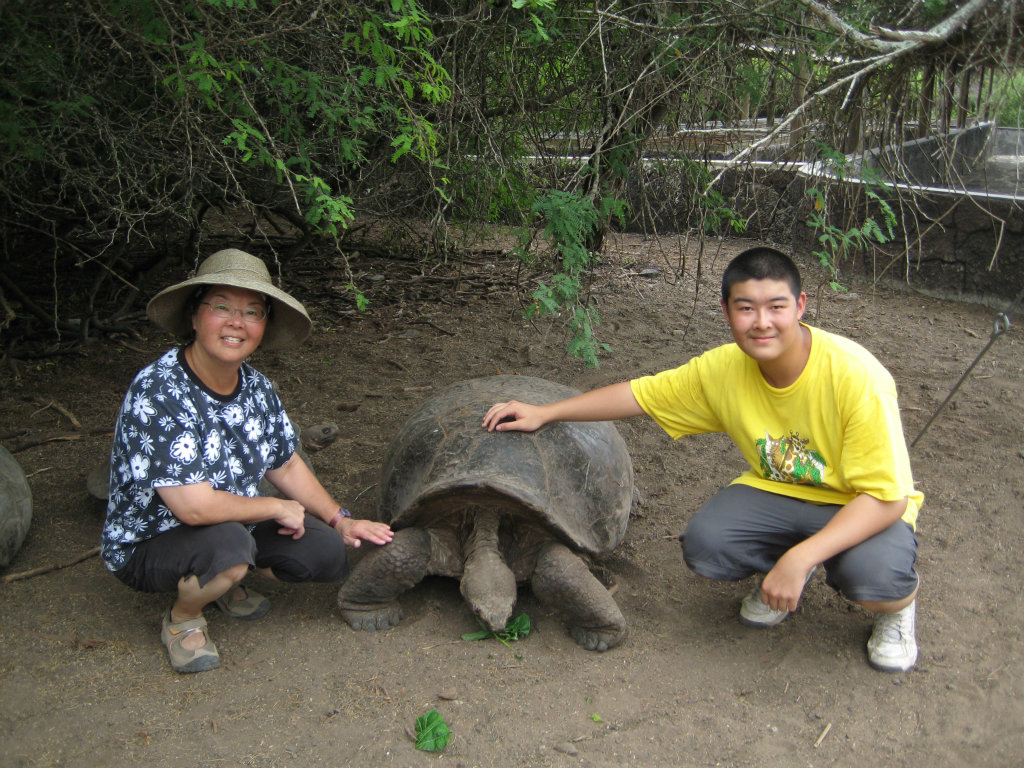Turtle Conservation Program