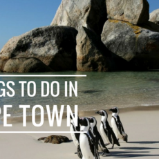 things to in Cape town