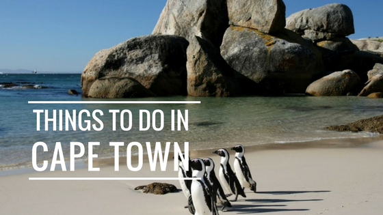 Things To Do in Cape Town-South Africa While Volunteering