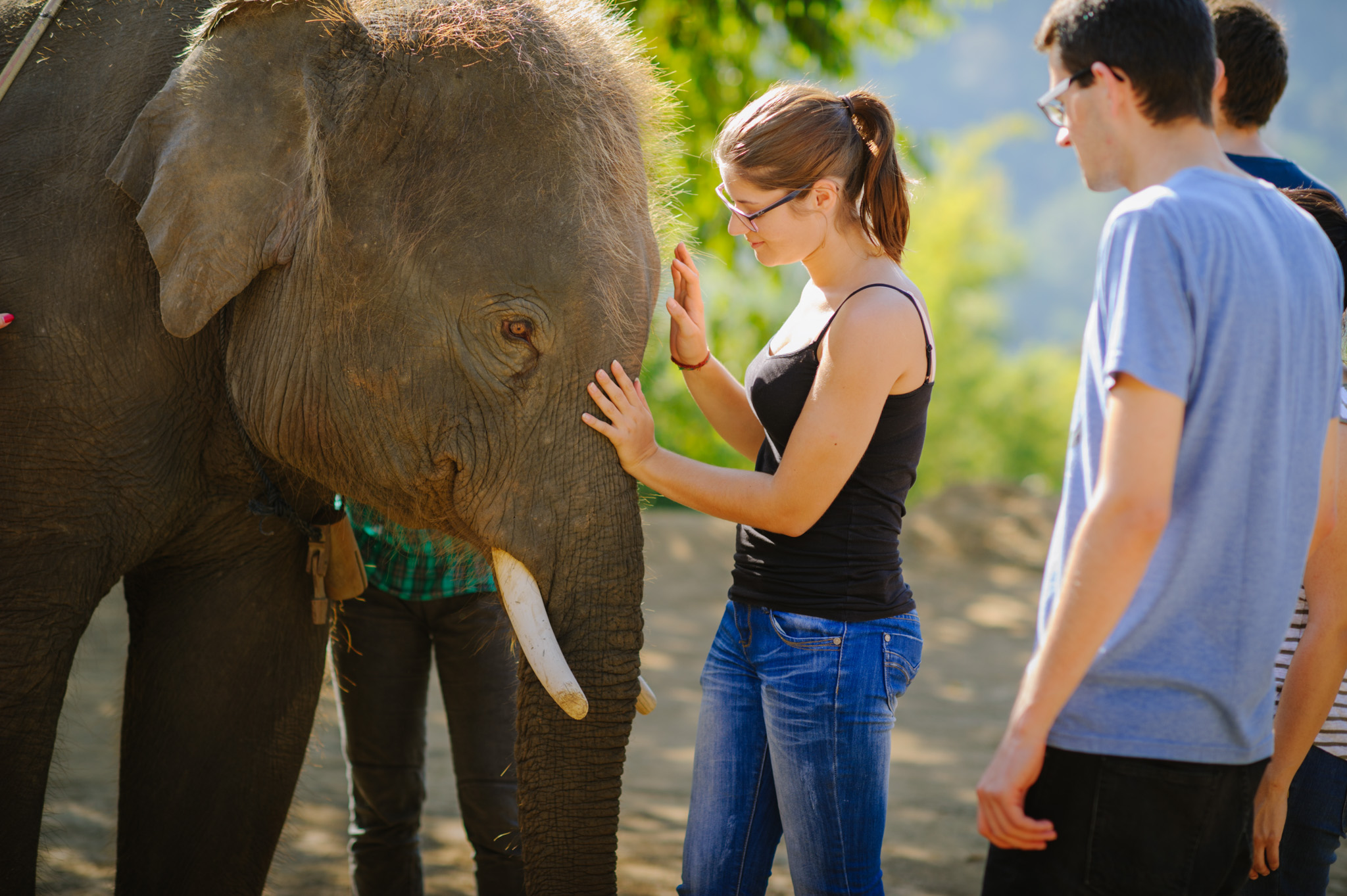 Top 10 Volunteer Opportunities in Thailand To Choose