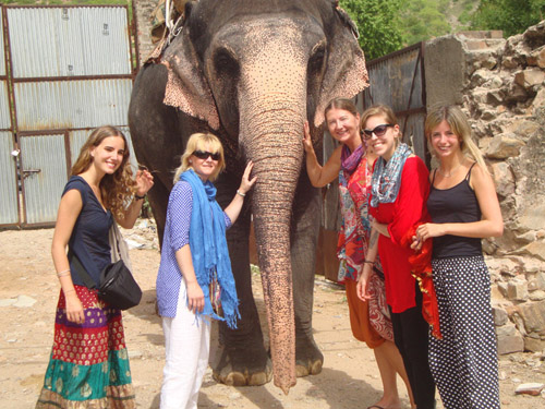 Things To Do In Jaipur While Volunteering In India