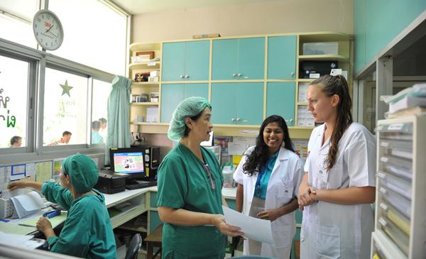 internship-abroad-with-volsol