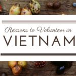 6 Reasons to Volunteer in Vietnam in 2017