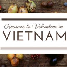 reasons to volunteer in vietnam