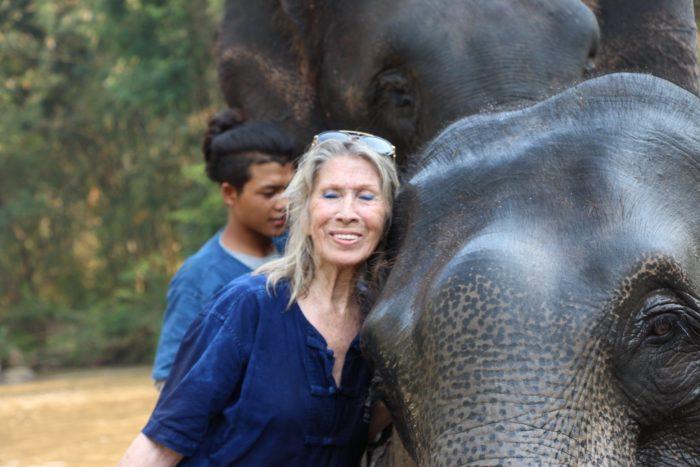 elephant to beaches volunteering in Thailand