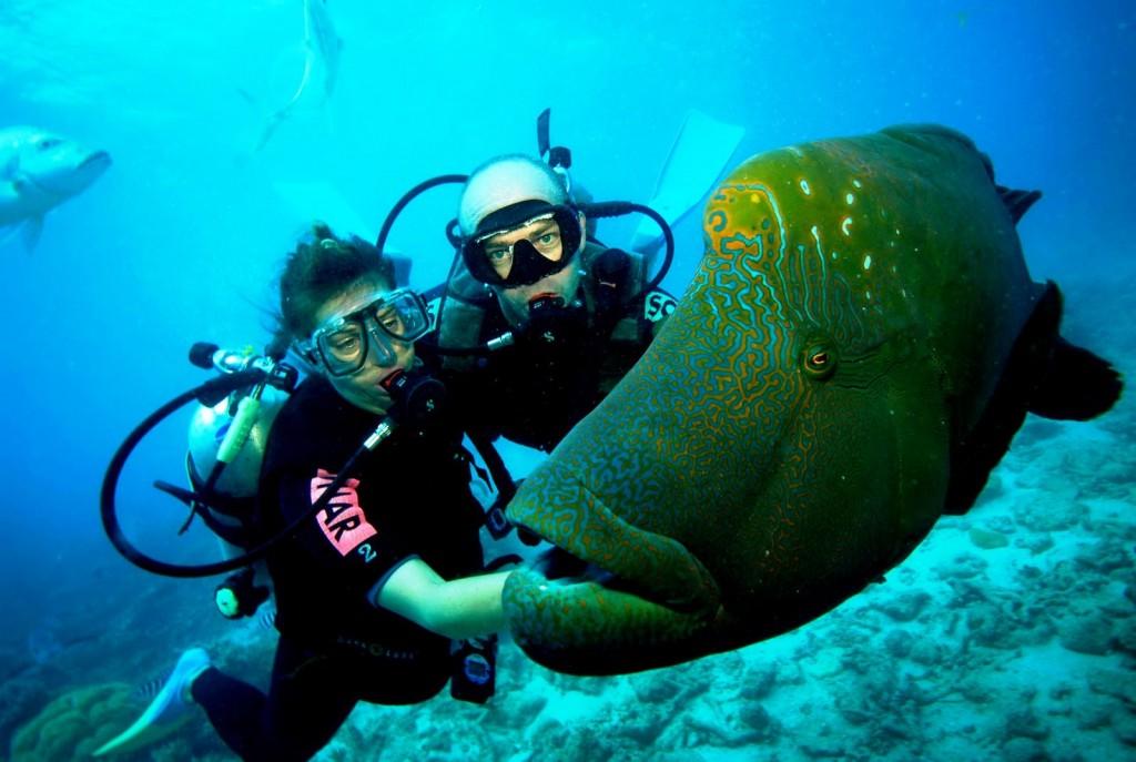 scuba-diving in India