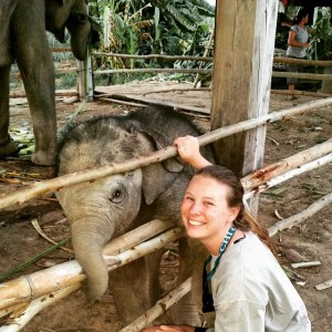 My Volunteering Experience in Thailand – Ayla Oden