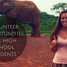 Volunteering Projects For High School Students