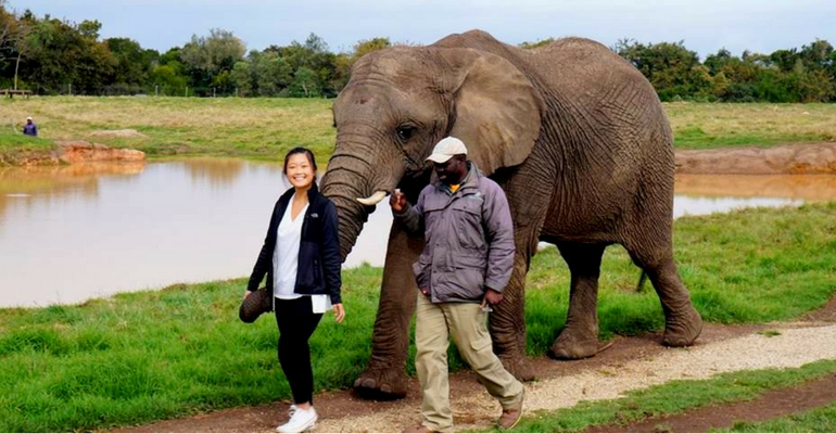 A Volunteer's Journey From Pittsburgh to Cape Town – Wendy Kong's Experience