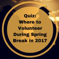 volunteer during spring break