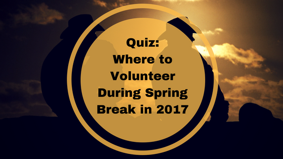 volunteer during spring break