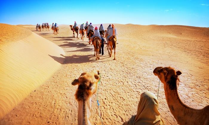 Thar Desert Jaisalmer