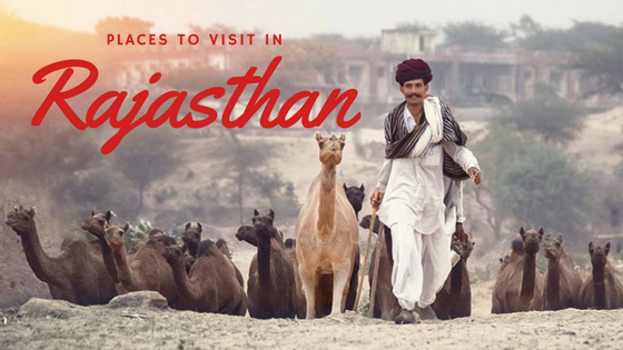 Rajasthan Getaways | Where To Go In The Desert State