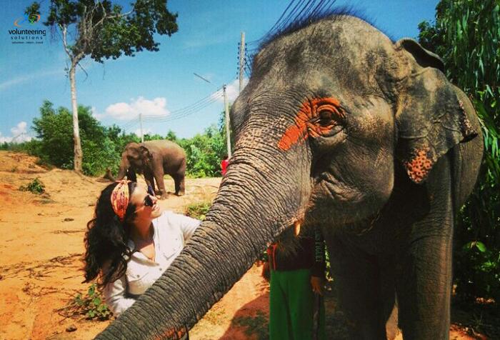 summer volunteer in Thailand