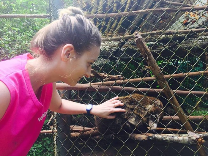 Animal rescue volunteer project in Costa Rica