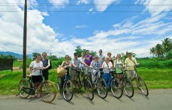 Cycling along the rice fields in Cambodia