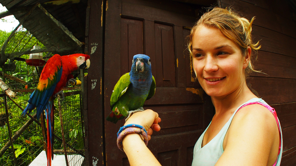 volunteer-work-ecuador-animal-rescue-center-puyo