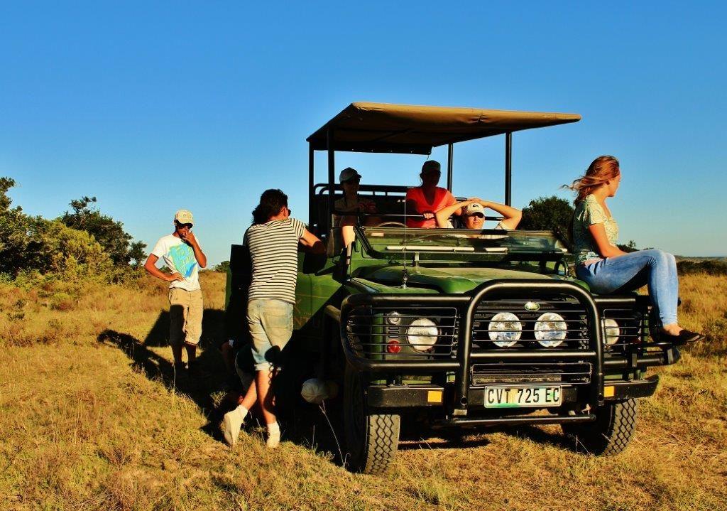 bénévolat animalier en Afrique du Sud