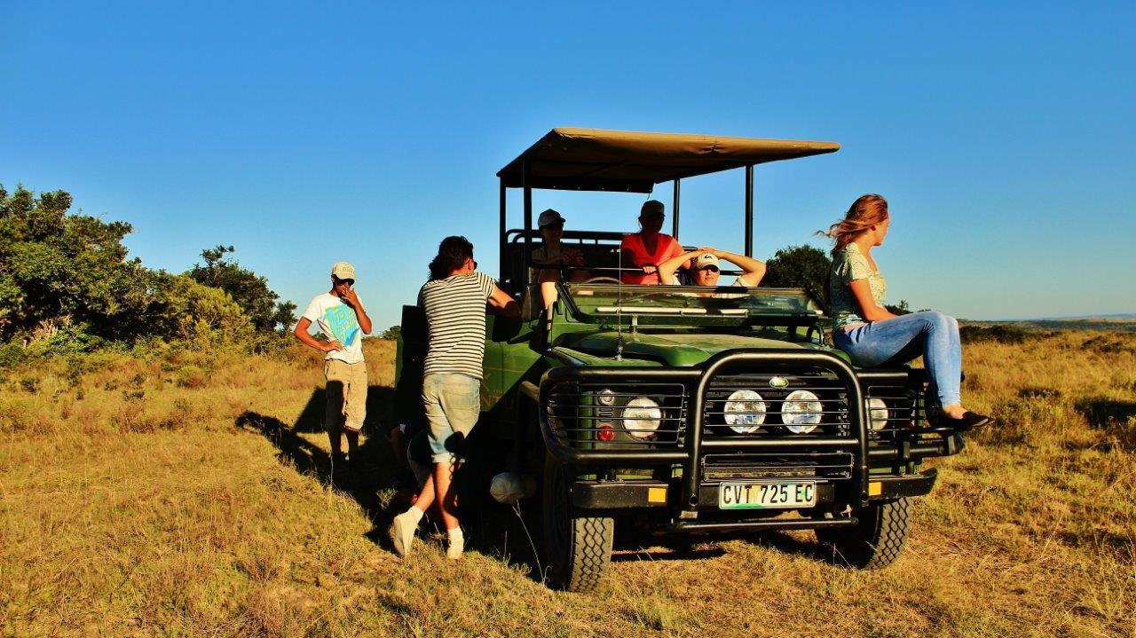 wildlife volunteering in South Africa