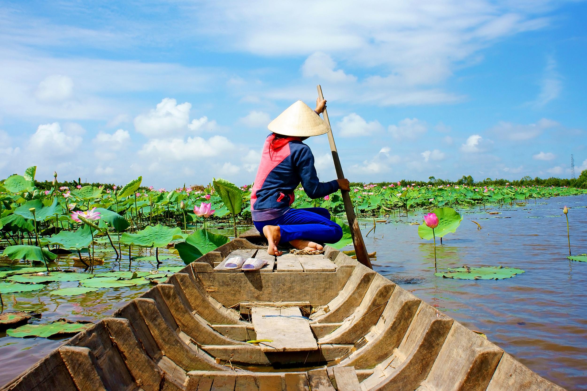 Volunteer Work In Vietnam: A Comprehensive Guidebook | VolSol Blog