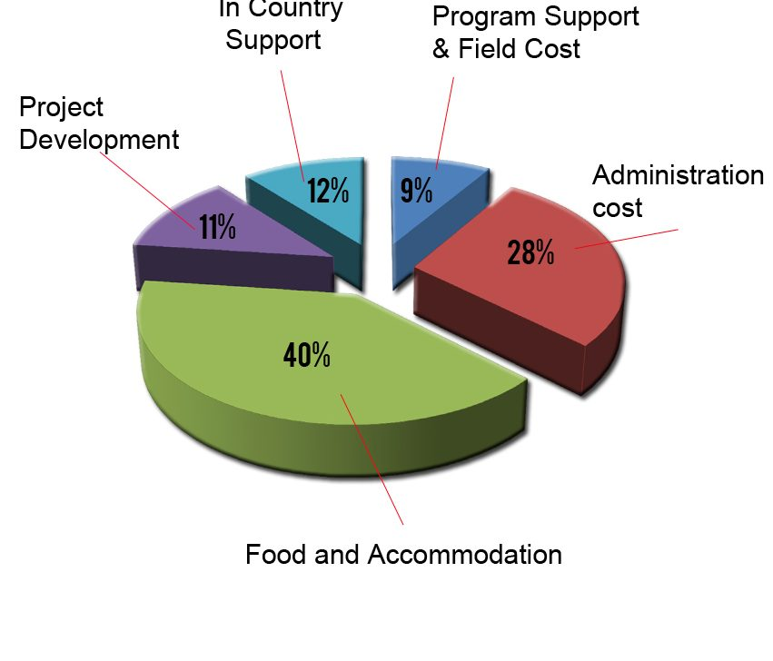 volunteering-cost
