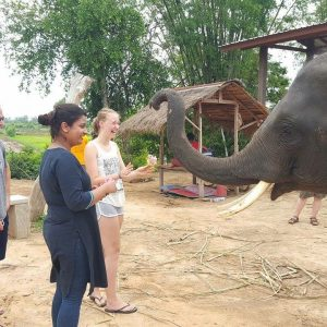 Three Weeks Of Transformative Travel Experience In Thailand