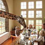 Places To Visit While Volunteering In Kenya