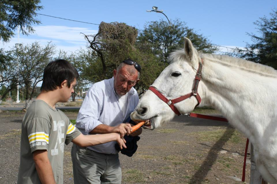 Hippotherapy volunteering in Argentina